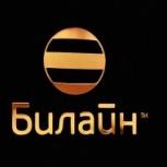 Билайн. Лучшие номера с переоформлением, Новосибирск