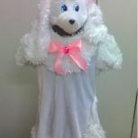 Новогодний костюм Пудель-девочка, Новосибирск