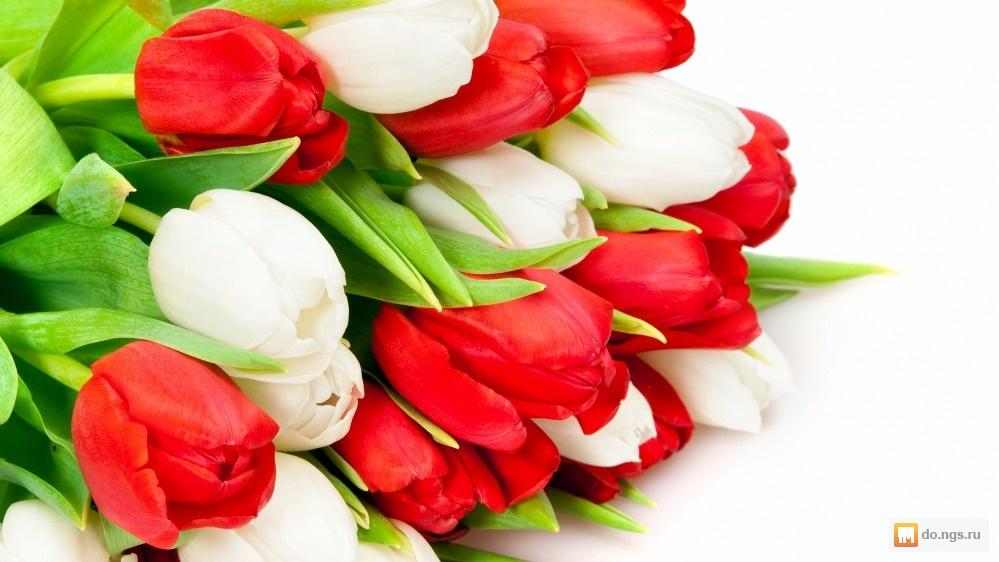 Цветы новосибирск дешево оптом