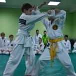 Джиу-джитсу для детей и взрослых, Новосибирск
