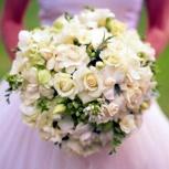 Фото и видеосъемка свадьбы, Новосибирск